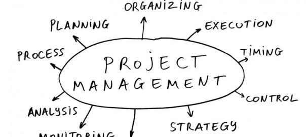 Poza-management-de-proiect